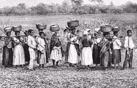 Fila de escravos, Vale do paraíba do Sul- Litografia sobre foto de Victor Frond-1859