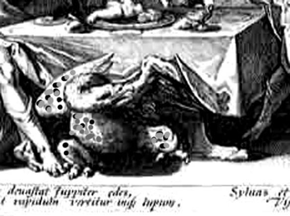 Gravura 1856 - in 'Das Angolanisches ganze leben', Hoffenabuer, K.B.