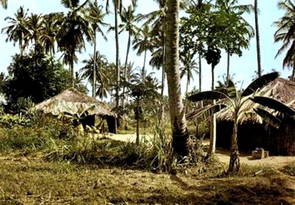 Aldeia típica Bakongo, Angola -Extraído de xiconhoca.com
