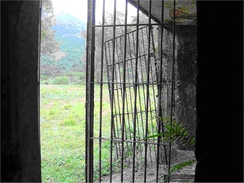 Ruínas dos fundos da velha cadeia do presídio da Ilha Grande, Rio de Janeiro, Brasil.