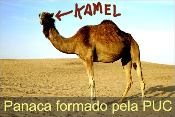 Kamel: Qualquer semelhança é mera coincidência