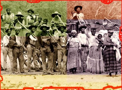 Partida para a colheita de café com carro de boi- Vale do Paraíba do Sul - 1885. Marc Ferrez/ Coleção Gilberto Ferrez/ Acervo Instituto Moreira Salles.